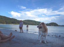 Pantai Kulambu Kudat_WP